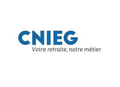 RSE exemple , logo CNIEG